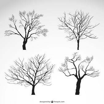 Winter bomen silhouetten