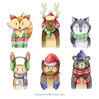 Winter bos dier