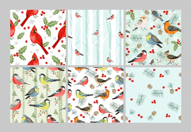Winter vogels naadloze patronen instellen. koude seizoen zangvogels cartoon illustraties. rode kardinaal, kerstmissymbool met maretakbladeren en bessen. decoratieve xmas tijd inpakpapier ontwerp.