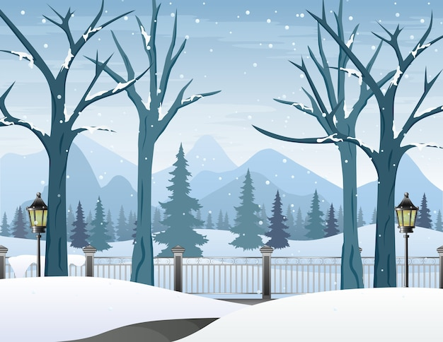 Winterlandschap met besneeuwde weg en kale bomen