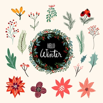 Winterplantencollectie