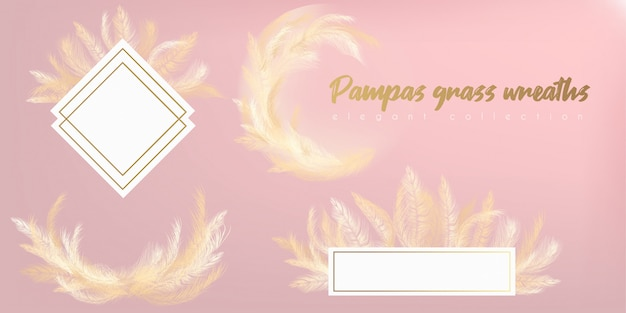 Wit gras van pampa's van de kroon