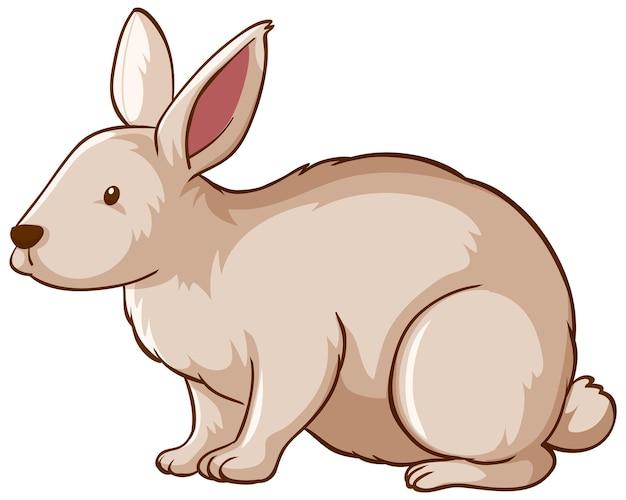 Wit konijn dierlijk beeldverhaal op witte achtergrond