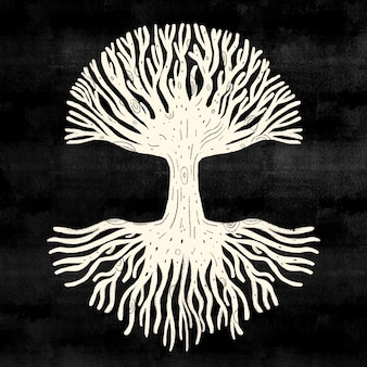 Witte boom leven op zwarte achtergrond
