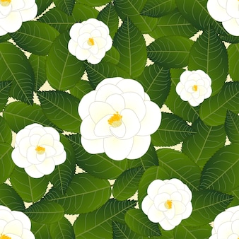 Witte camellia bloem op ivoor beige achtergrond