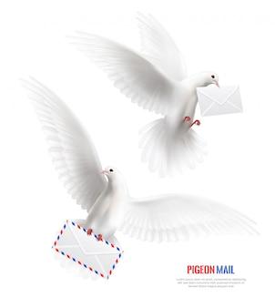 Witte duiven bezet met enveloppen