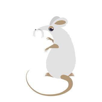 Witte muis. grappige witte rat geïsoleerd op een witte achtergrond. vector.
