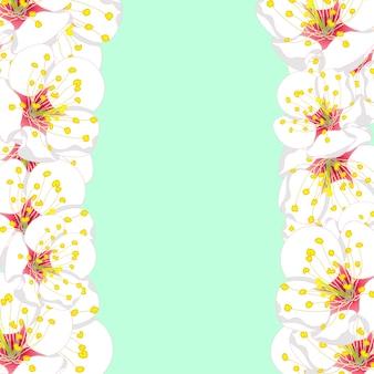 Witte pruimenbloesem bloemenrand op groene munt