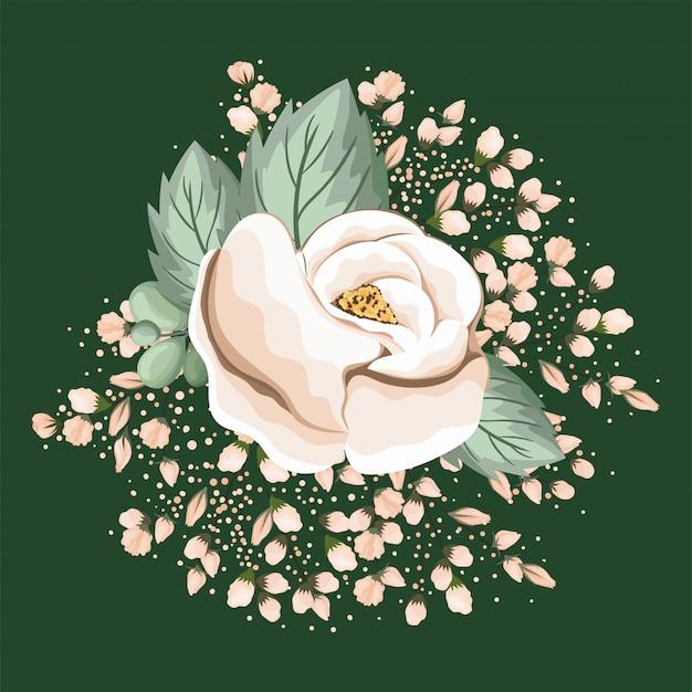 Witte roos bloem met bladeren schilderij ontwerp, natuurlijke bloemen natuur plant ornament tuindecoratie en plantkunde thema illustratie