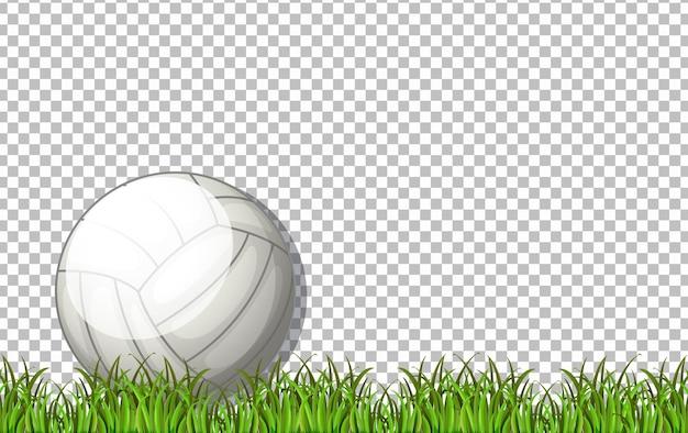 Witte volleybalbal en gras op transparante achtergrond