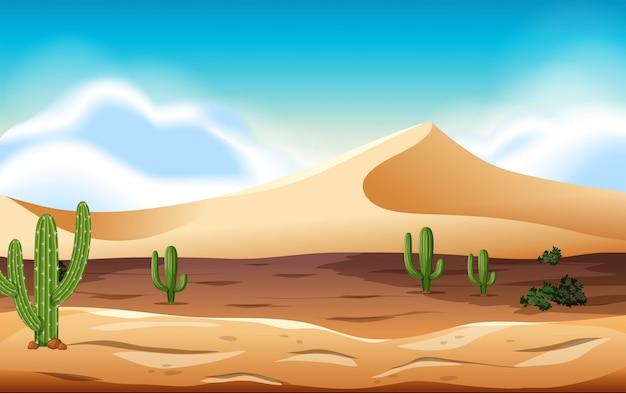 Woestijn met duinen en cactus