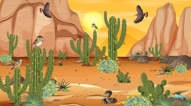 Woestijnboslandschap bij zonsondergangscène met woestijndieren en -planten