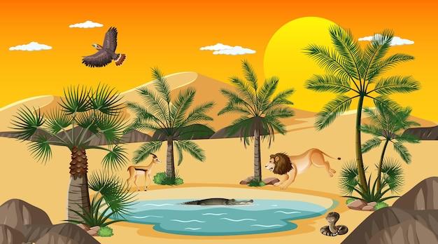 Woestijnboslandschap bij zonsondergangtijdscène met oase