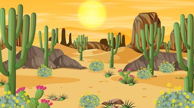 Woestijnboslandschap bij zonsondergangtijdscène met vele cactussen