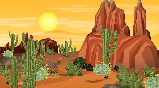 Woestijnboslandschapsscène bij zonsondergangtijd