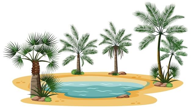 Woestijnlandschap met natuurboomelementen op witte achtergrond