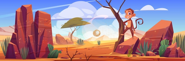 Woestijnlandschap met rotsen, cactussen en aap