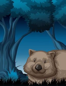 Wombat in de nachtscène van de natuur