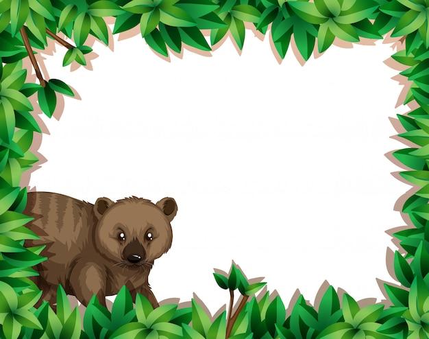 Wombat in het kader van het bladgarnituur