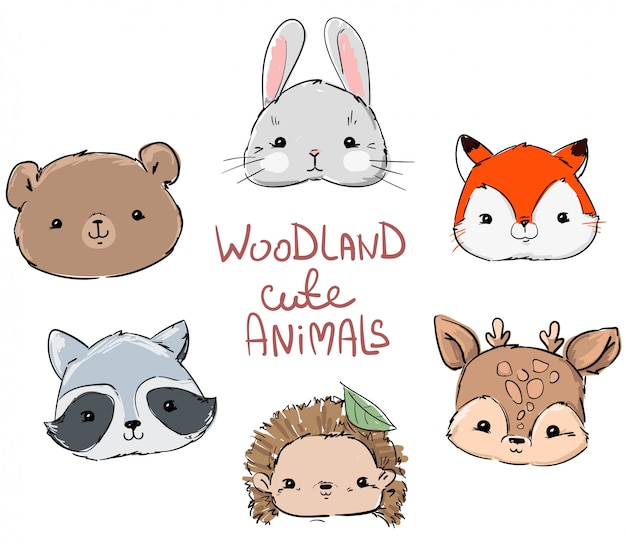 Woodland set animals, hand drawn cute rabbit, fox, bear, raccoon, hedgehog and deer.