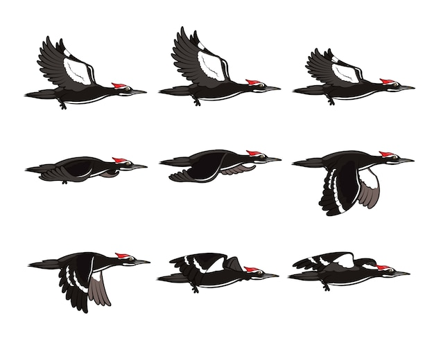 Woodpecker cartoon flying animation sprite