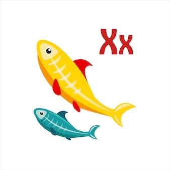 X-ray tetra. grappig alfabet, dierlijke vectorillustratie