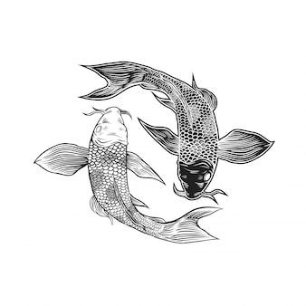 Yin yang koi vis