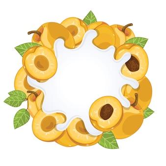 Yoghurtplons met abrikoos wordt geïsoleerd die