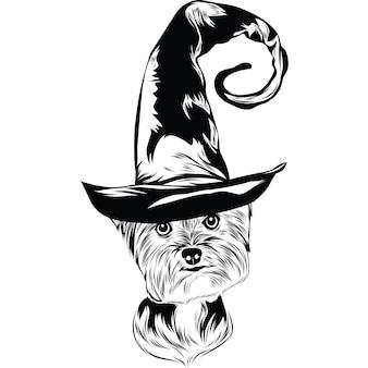 Yorkshire terrier-hond in heksenhoed voor halloween