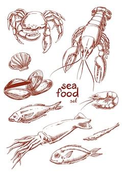 Zee voedsel hand tekening set