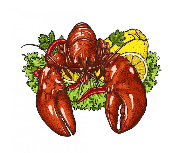 Zeekreeft met groente op wit