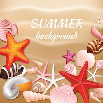 Zeeschelpen en sterren op de beige van de zandzomer vectorillustratie als achtergrond