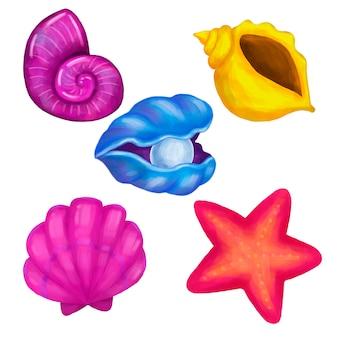 Zeeschelpen en zeesterren