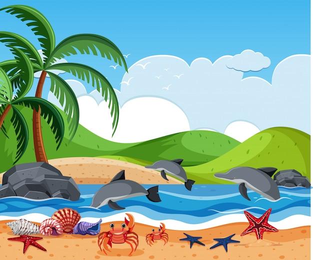Zeeschepsel op het strand