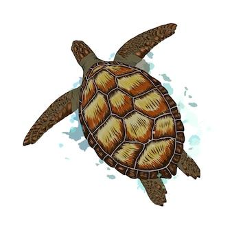 Zeeschildpad uit een scheutje aquarel, gekleurde tekening, realistisch. vector illustratie van verven