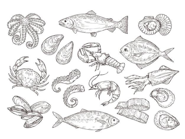 Zeevruchten schets. vintage vis, voedsel tekenen