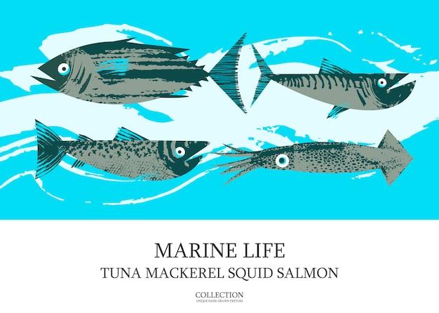 Zeevruchten. vis. kleurrijke vectorillustratie, een verzameling afbeeldingen van verschillende vissen met een unieke handgetekende vectortextuur. poster van tonijn, makreel, zalm, inktvis.