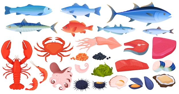 Zeevruchten, vis, krabben, garnalen, kreeft, inktvis, inktvis, stukjes vis, mosselen, oesters, kaviaar.