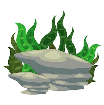 Zeewier met steenvector