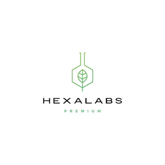 Zeshoek blad natuur lab hexalabs logo pictogram illustratie