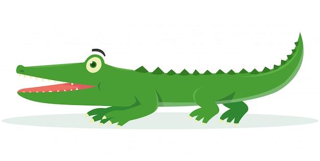 Zijaanzicht van krokodil op witte achtergrond wordt geïsoleerd die
