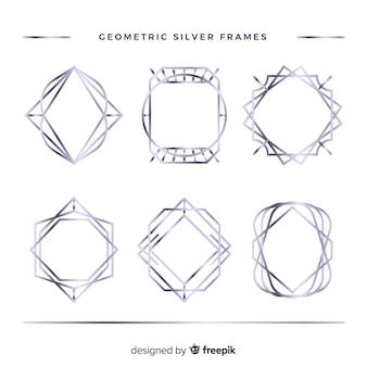 Zilveren frame-collectie