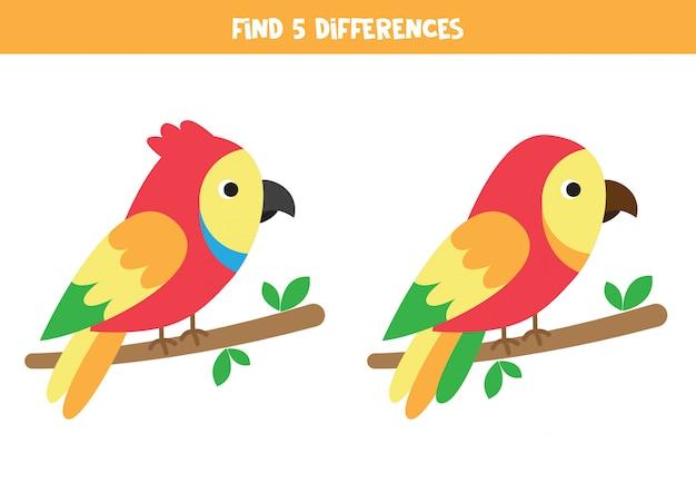 Zoek 5 verschillen. twee schattige cartoon papegaaien.