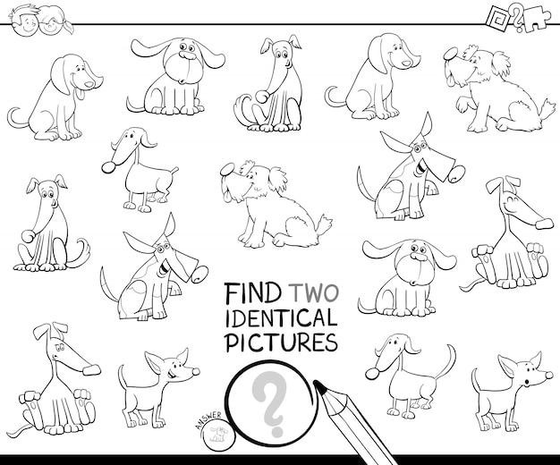 Zoek het kleurenboek met twee identieke afbeeldingen