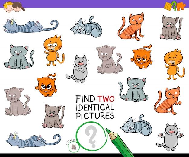 Zoek twee identieke afbeeldingen educatief spel