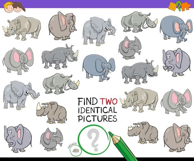 Zoek twee identieke dierenfoto's game