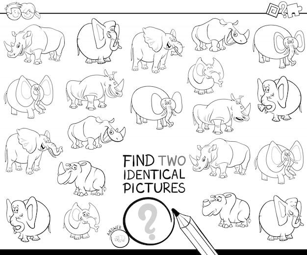 Zoek twee identieke kleurenfoto's voor dierenfoto's