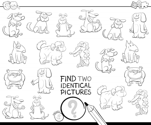 Zoek twee identieke kleurenfoto's voor hondenfoto's