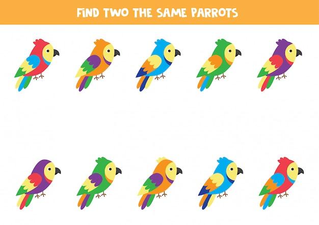 Zoek twee identieke kleurrijke papegaaien. educatief spel voor kinderen.