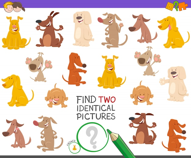 Zoek two identical pictures game met honden
